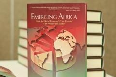 Book launch Dr. Kingsley Moghalu, 1 November 2013